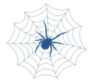 Blue Spider Consulting